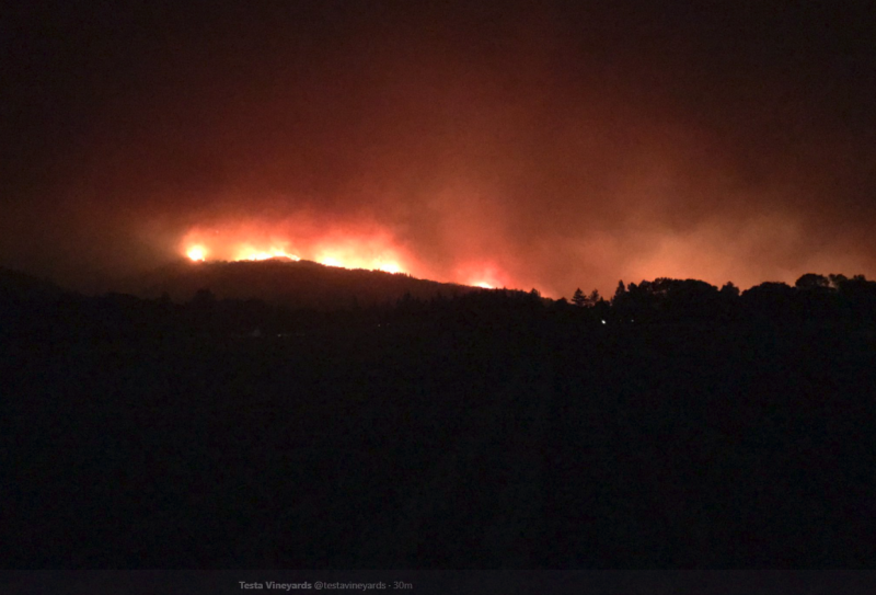 Flames burning near Testa Vineyards in Mendocino.