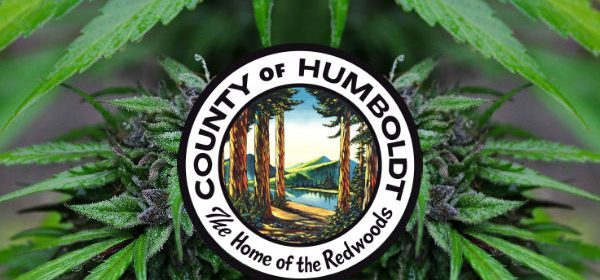Humboldt Cannabis icon