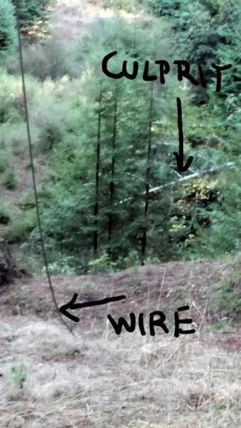 Downed wire