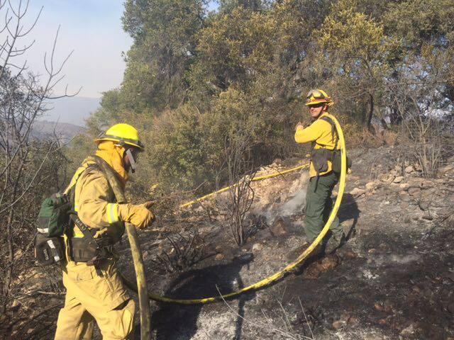 Strike team battling the Thomas Fire. [Photo by Thomas Norris]