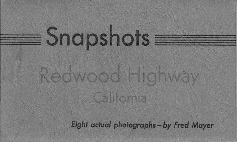 Snapshots of the Redwood Highway