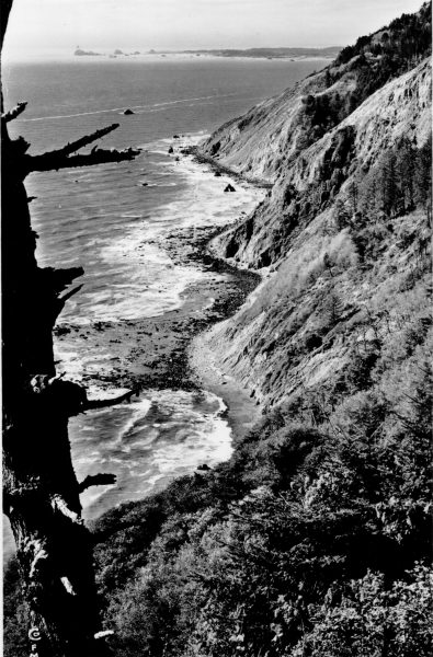 """The Coast line as it appears from the Redwood Highway about 12 miles south of Crescent City"""