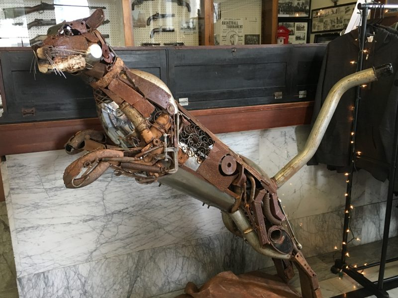 rio dell cougar women Dan mccauley's cougar debuts in rio dell friday watch yourself, metal owlrio dell will soon release some new, ferocious forged fauna onto its main drag.