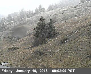 Snow on Berry Summit Vista Point.