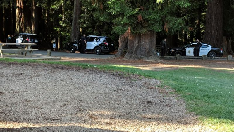 Law enforcement prepares for a felony stop in Sequoia Park