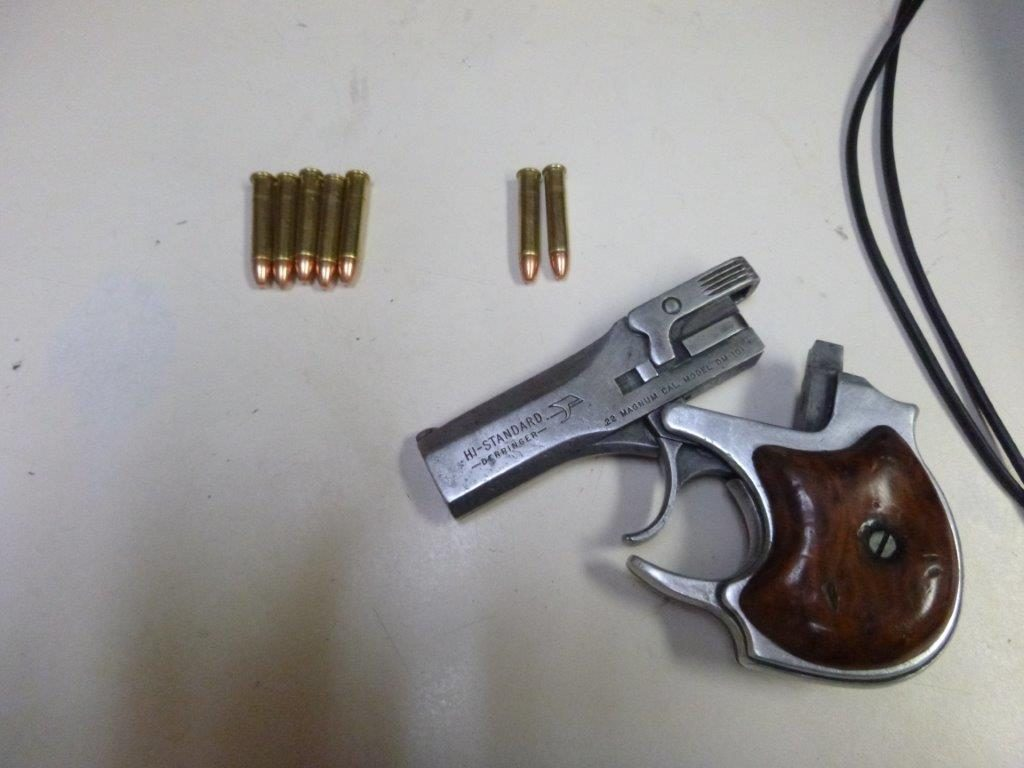 handgun and ammunition
