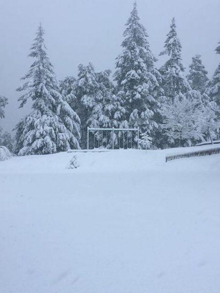 Kneeland snow