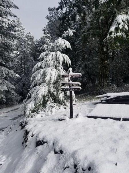 Snow just under 2000' elevation in Piercy.