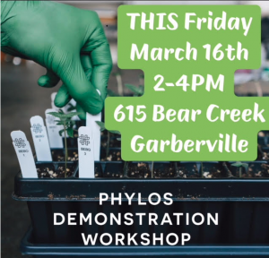 Phylos demonstration workshop