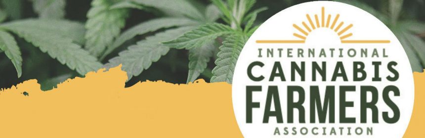 International Cannabis Farmers Association