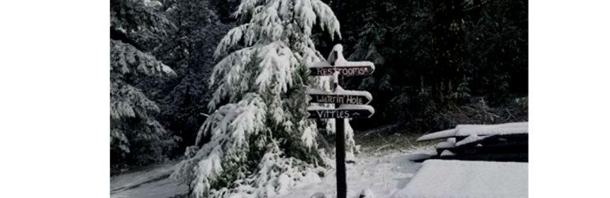 Piercy snow