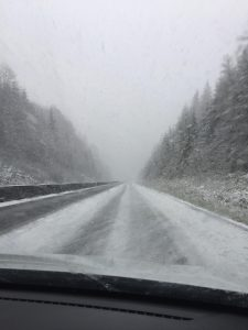 Hwy 101 between Klamath and Orick near the Newton B Drury Parkway.