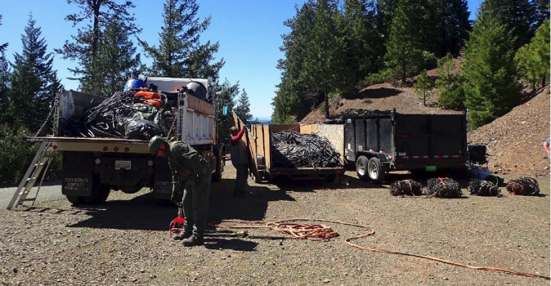 A portion of the irrigation line and trash removed from the Jones Ridge trespass grow complex Jones Ridge trespass grow complex in the Yolla Bolly – Middle Eel Wilderness on the Six Rivers National Forest loaded for transportation to an approved dump site.