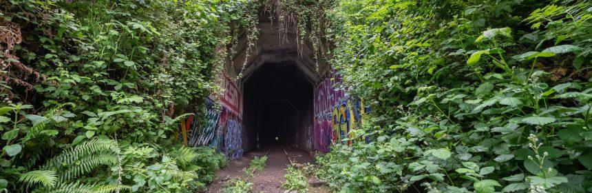 Tunnel in Loleta by David Wilson crop