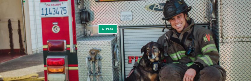 fireman and dog from the Heros and Hounds calendar