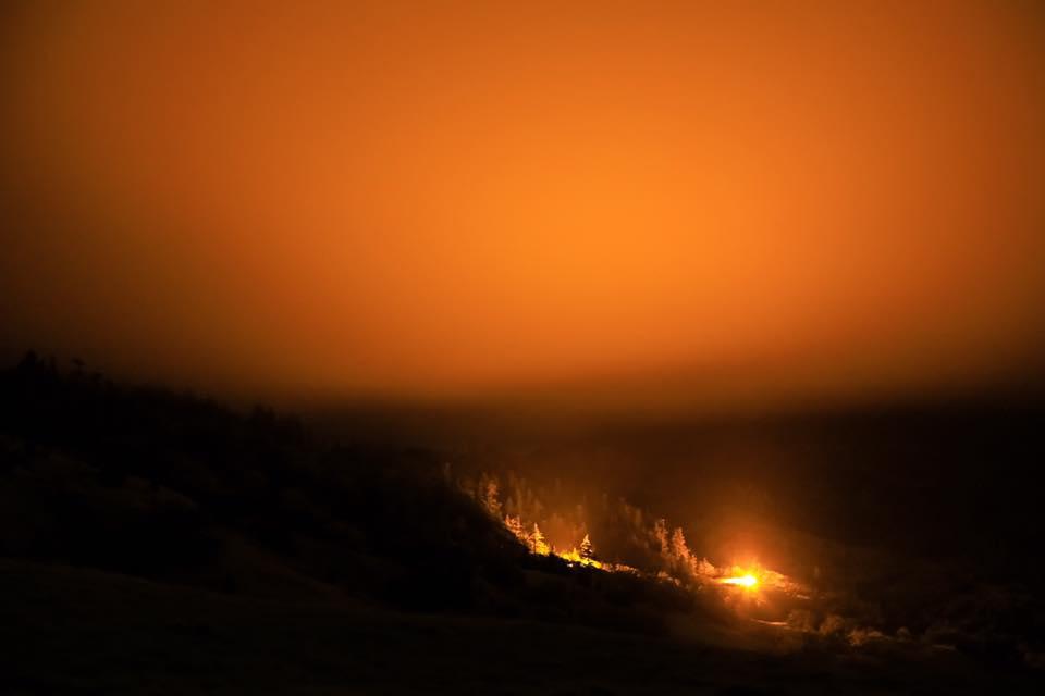 Light pollution marijuana