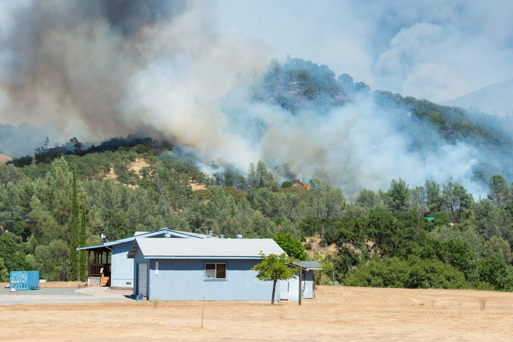 After a calm morning, the winds picked up and the fire began to expand rapidly.