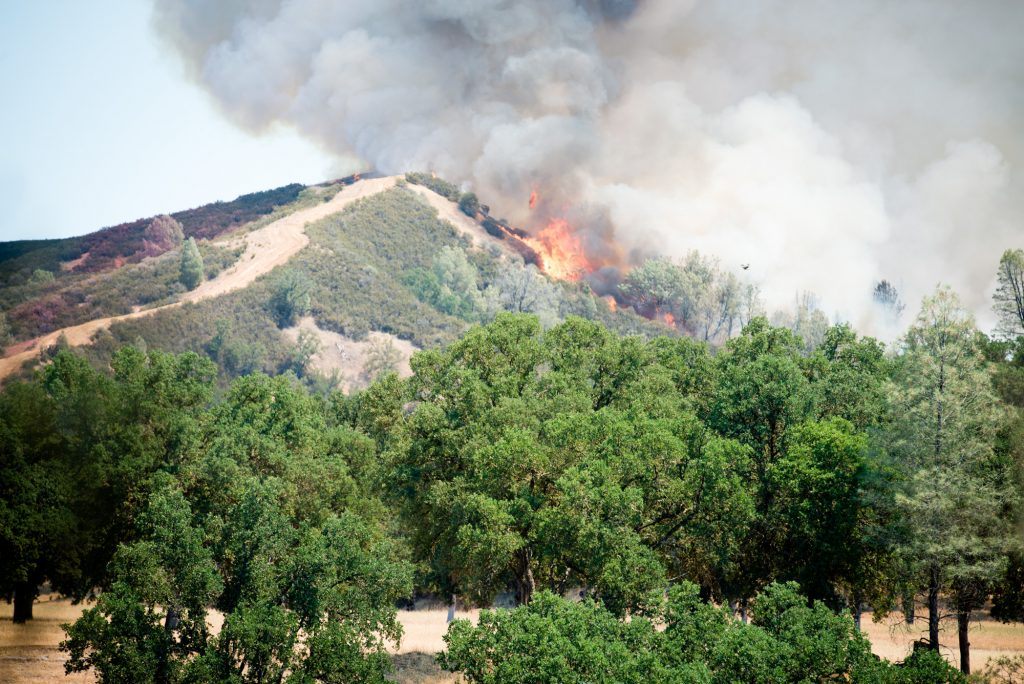 Fire breaks over a ridge just North of the Cache Creek Winery.