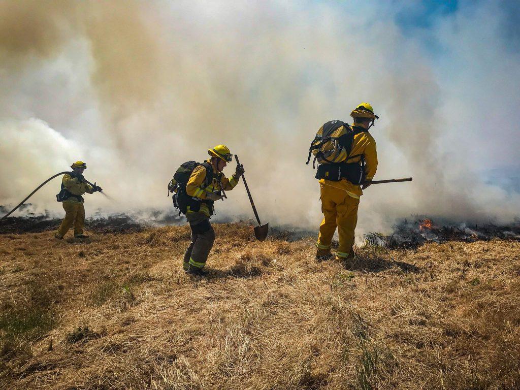 Firefighters veg fire
