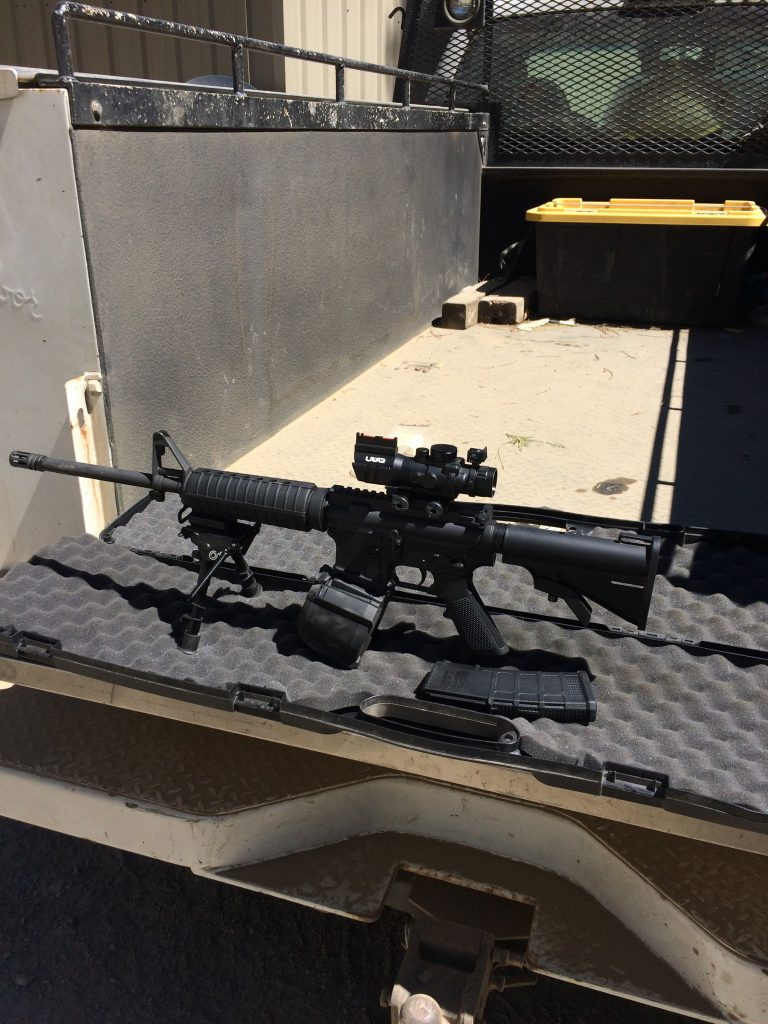 AR 15 style rifle with high capacity magazines