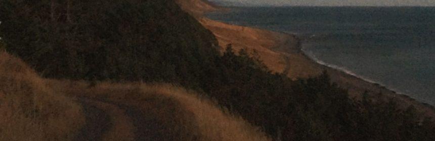 Lost Coast screen grab Kai Ostrow