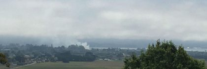 Smoke rises from a fire burning in the vegetation on M Street in Arcata.