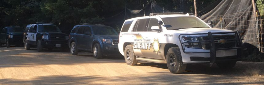 Trinity co sheriff and other law enforcement at a marijuana grow.
