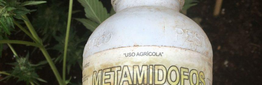 Metamidofos