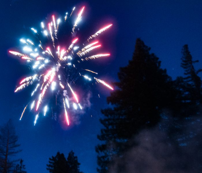 A firework exploding in the midst of the town which is surrounded by redwoods.