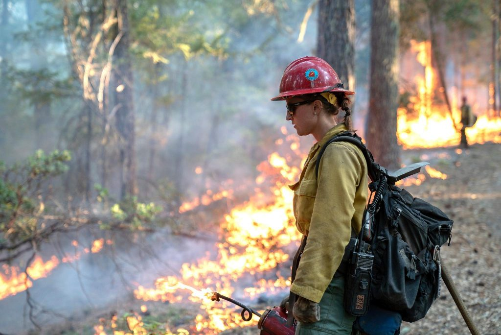Laura Spellman, Redding, California, Hot Shot firefighter, uses a drip torch to burn lower vegetation to contain the oncoming fire in Mendocino National Forest, California. (Forest Service photo by Cecilio Ricardo)