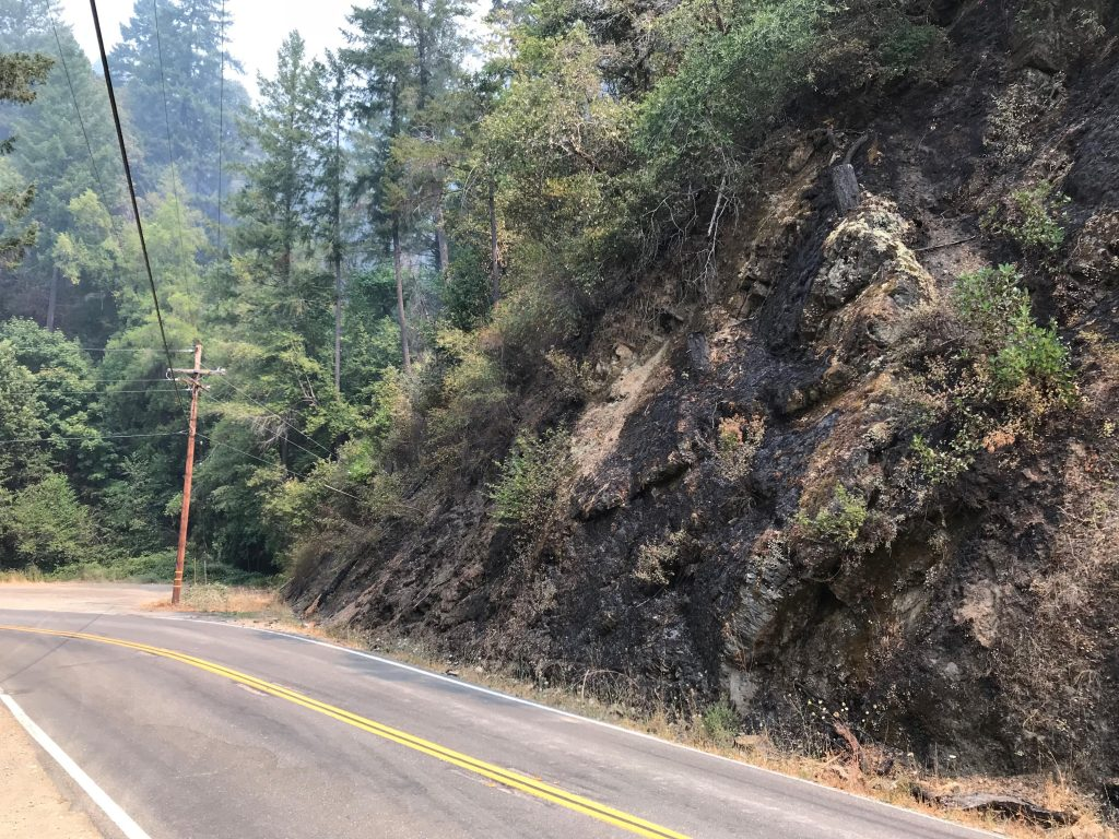 A charred steep slope on Hwy 96 from two days ago.