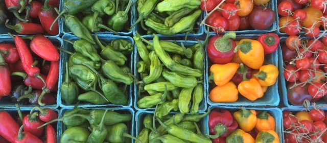 Garden stall farmers market