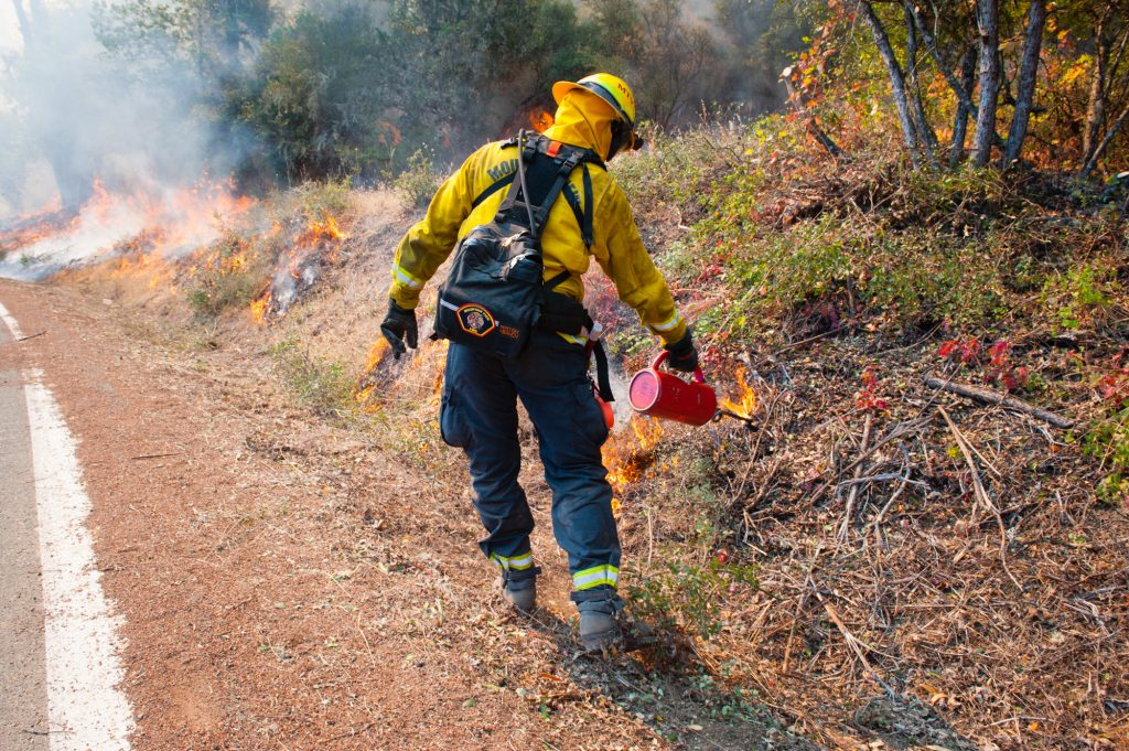 A firefighter uses a drip torch to start fire as part of a burn out operation on Scott's Valley Road in Lake County California to fight the River Fire.