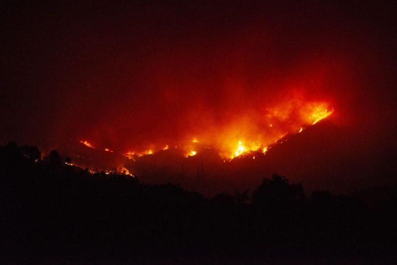 Men Arrested For Refusing To Evacuate Ranch Fire, Water Marijuana Plants Instead