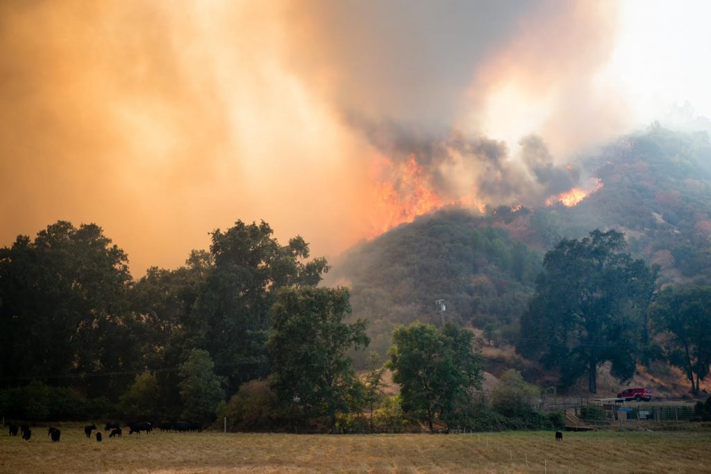 The River Fire crests a hill in Scott's Valley in Lake County California on Friday.