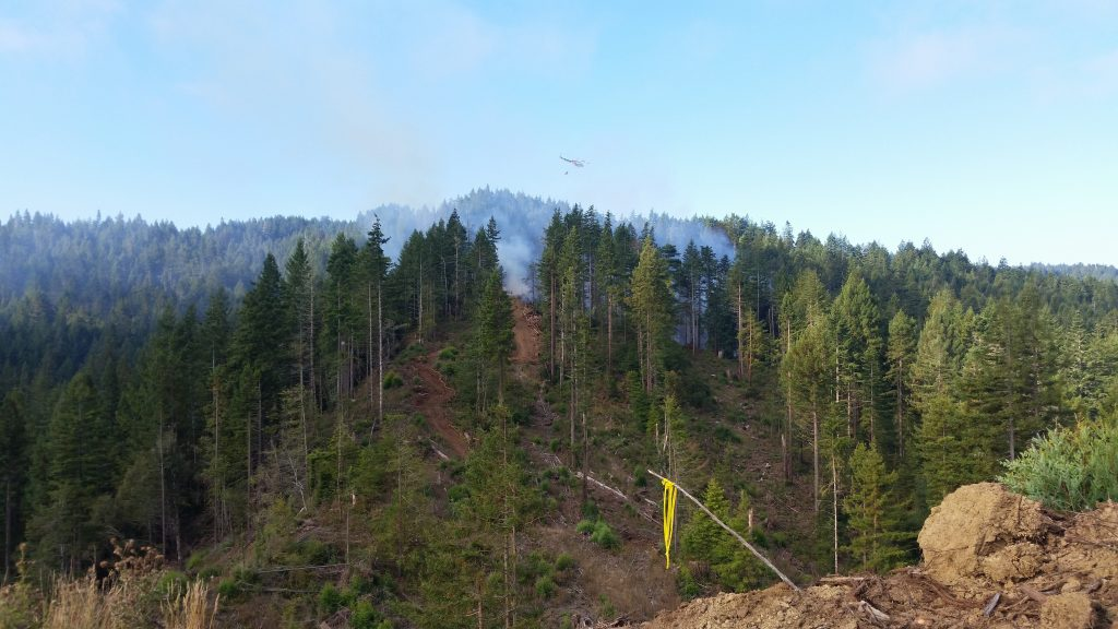 The Ranch FIre near Carlotta