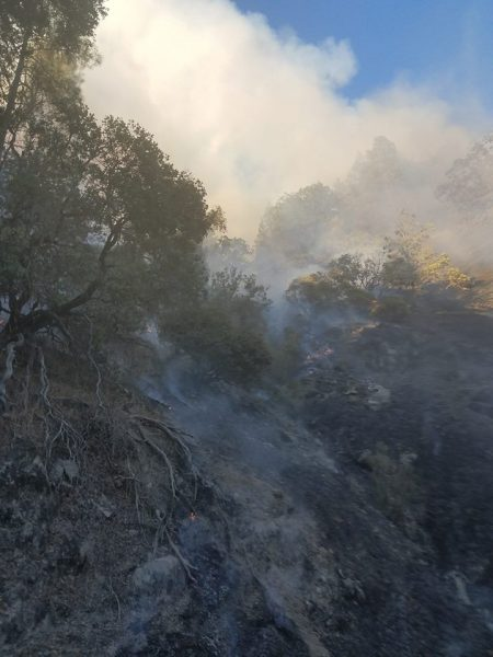 Flames and smoke from the Shimmins Fire crawl up a steep hillside.