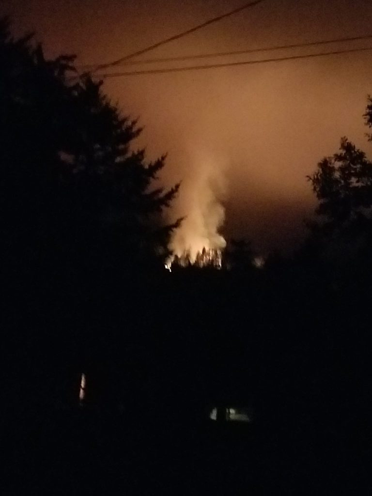 fire near Carlotta