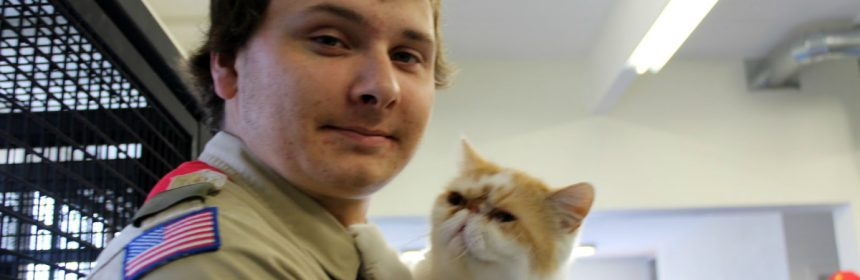 Eagle scout and cat