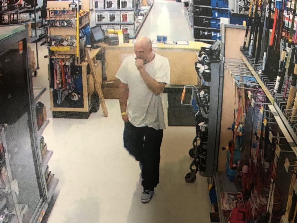 Suspected Car Burglar
