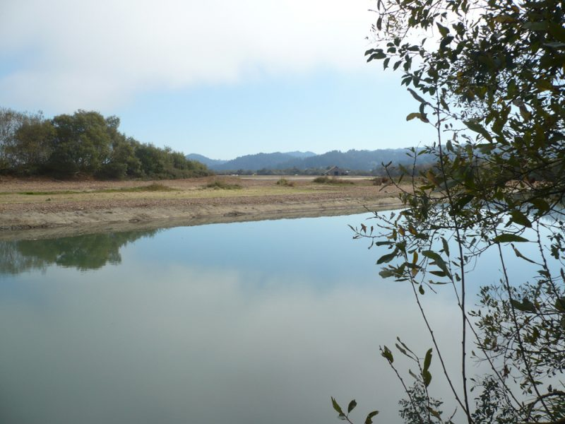 The newly reopened western end of the Salt River in Humboldt County, California. The cofferdam and levee were breached between the phase one excavation and the Eel River on October 9, 2013 and the River became tidal again in the lowest section of the restoration. The breech location is to the left (west) of this picture which looks south east toward the Wildcat Hills which are the headwaters and provide tributaries to this river. Between river and barn, notice restoration marsh is also holding water.