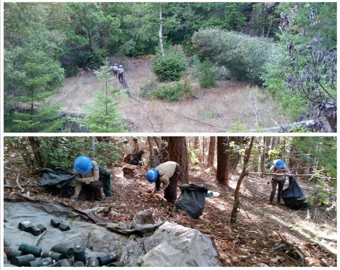 California State Parks and multiple agencies and non-profits haul out trash and infrastructure from illegal marijuana grow site at Humboldt Redwoods State Park.