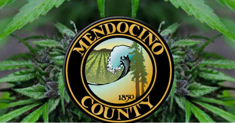 Mendocino marijuana Mendocino cannabis feature Icon