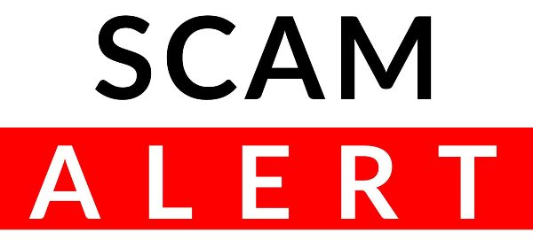 Scam Alert feature icon