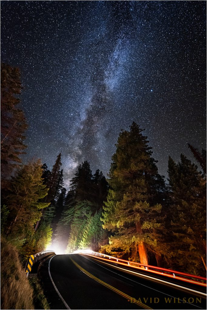 The Avenue of the Giants passes over Highway 101 beneath the MIlky Way at Women's Federation Grove, Humboldt County, California.