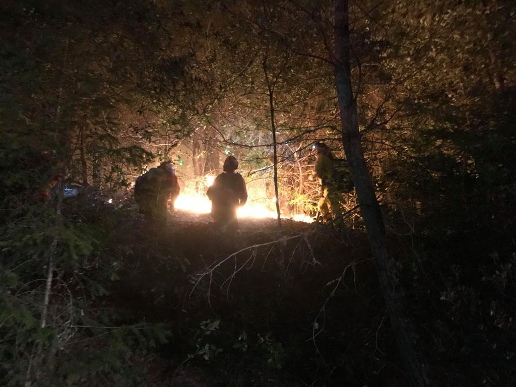 FIrefighters silhouetted against the glow of one of the multiple fires burning along Hwy 299.