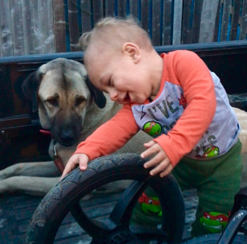 Baby Rhett, carried out of the flames in a laundry basket to safety, turned 12 months old last week - one of the youngest survivors of the Camp Fire disaster - is just happy to have his best friends and family by his side.
