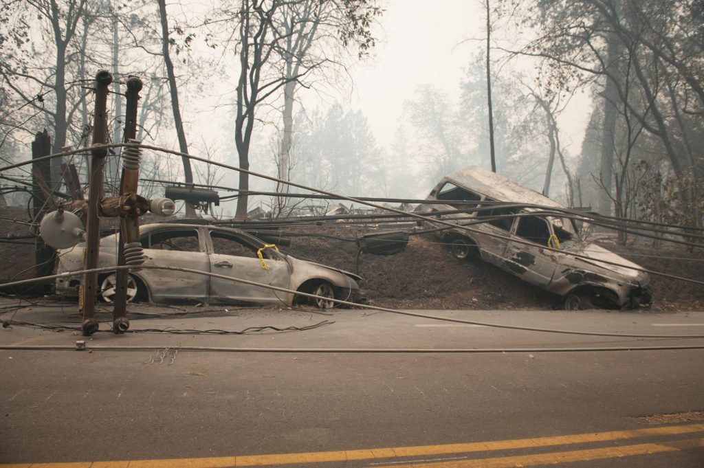 Burned cars on the side of Pearson Road near Paradise.
