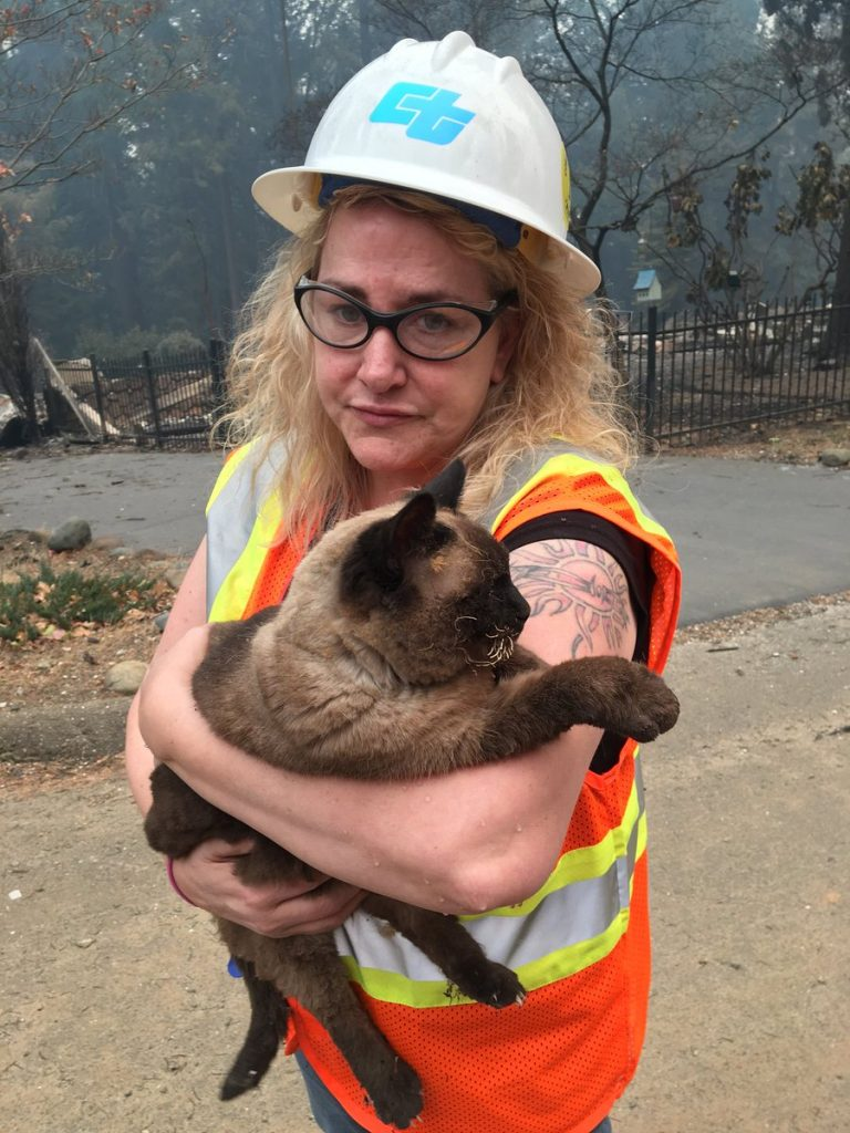 Our Maintenance crews are working 24/7 helping with the #CampFire, and that includes animal rescues like this one found in Magalia.