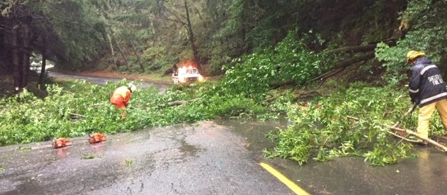 Crews clearing Beach Road in the Shelter Cove area after a tree fell.